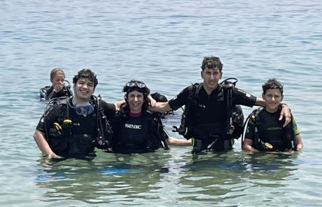 החיים מתחת למים