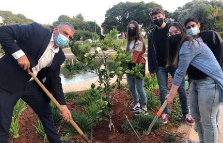 לראשונה בכפר סבא: עץ הנוער ניטע על ידי ראש העיר ונציגי מועצת הנוער העירונית